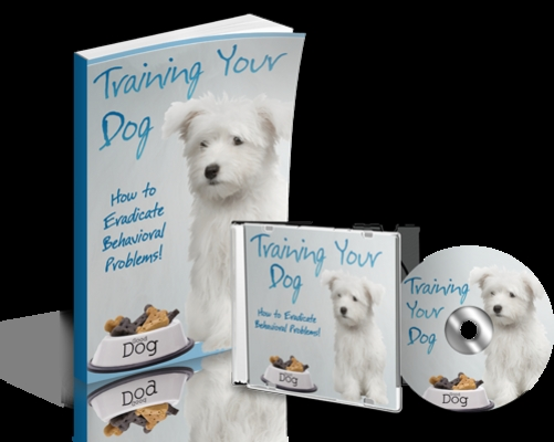 Product picture NEW 2010 Training Your Dog (MRR)