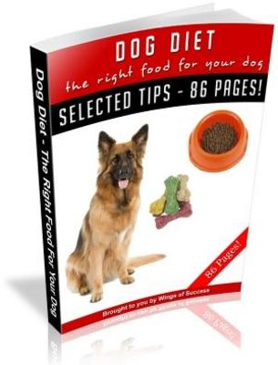 Product picture Dog Diet The Right Food For Your Dog (MRR)
